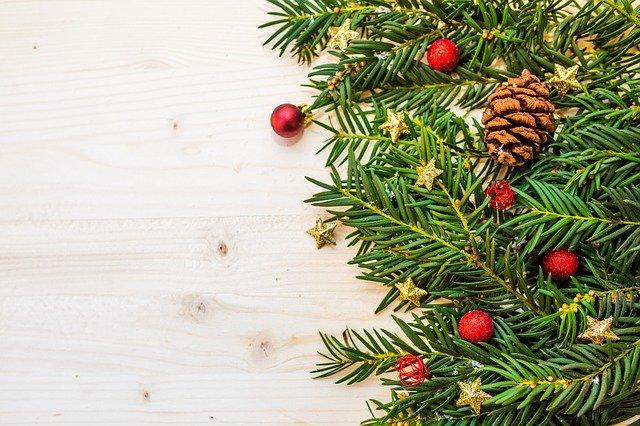 Atelier aromathérapie : les huiles essentielles pour passer de bonnes fêtes