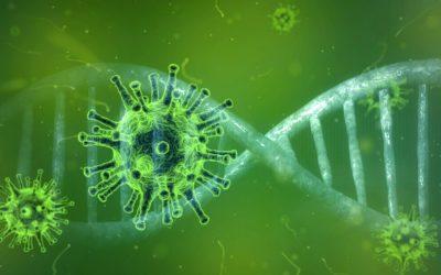 Conseils de prévention face à l'épidémie de Coronavirus Covid-19