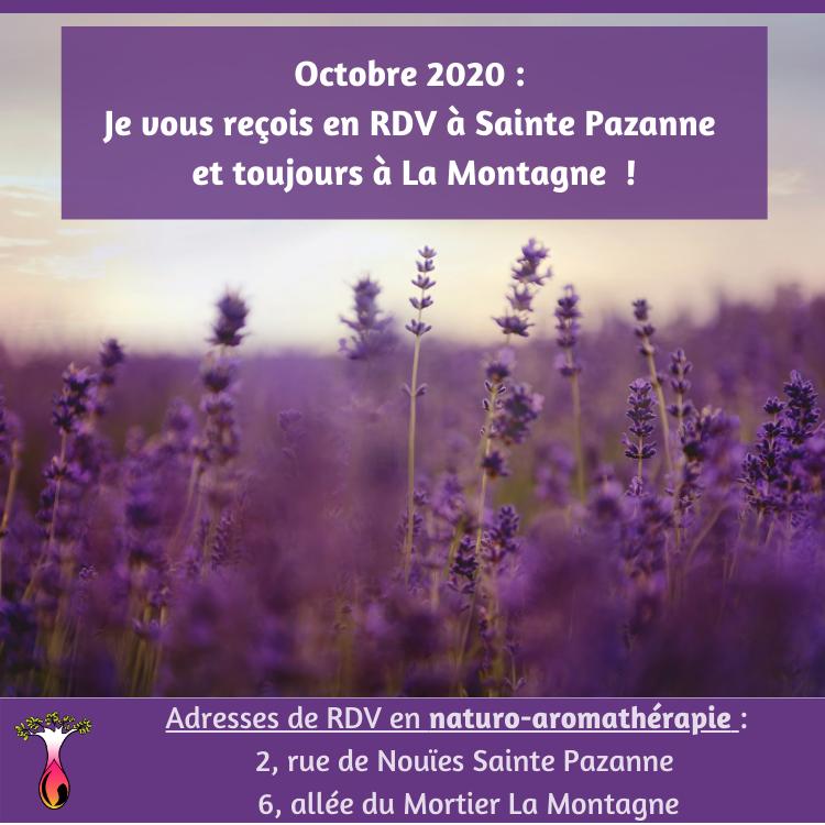RDV naturopathie 44680 Sainte Pazanne